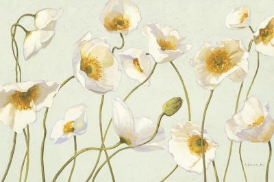 White and Bright Poppies