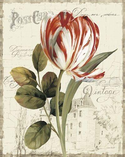 Garden View IIRed Tulip