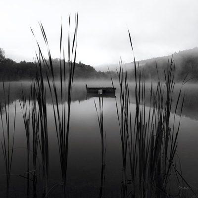 Through the Reeds at Dawn