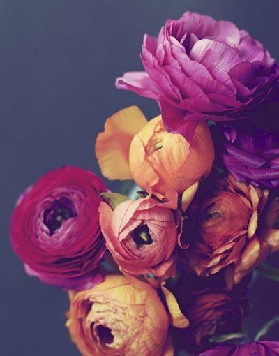 Deep Blooms