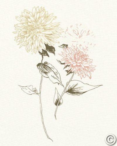 Flowers on White IV