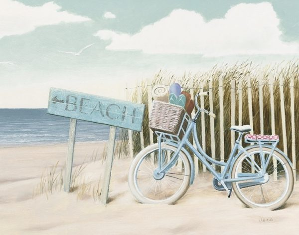 Beach Cruiser II