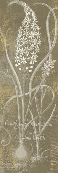 Flower Lines III