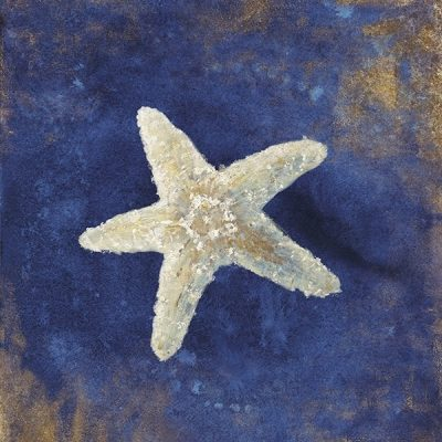 Treasures from the Sea Indigo IV