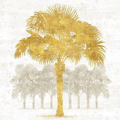 Palm Coast V