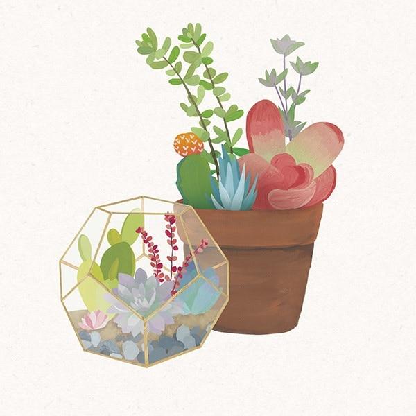 Succulent Garden III