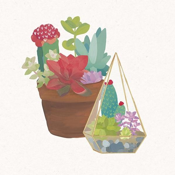 Succulent Garden IV