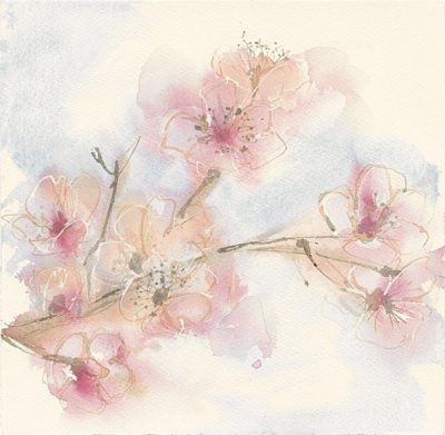 Pink Blossoms II