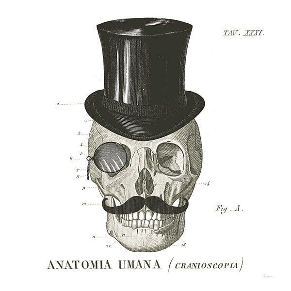 Dandy Bones I