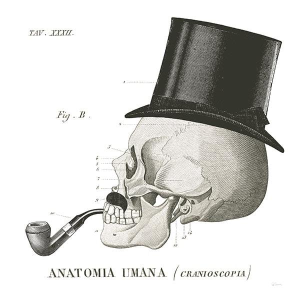 Dandy Bones II