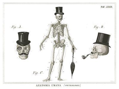 Dandy Bones