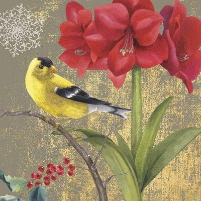 Winter Birds Goldfinch Collage