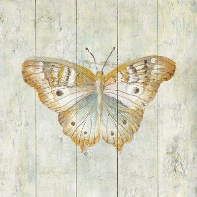 Natural Flora VII