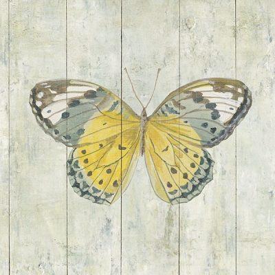 Natural Flora IX