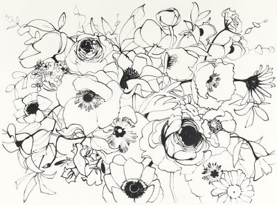 Black Line Poppies