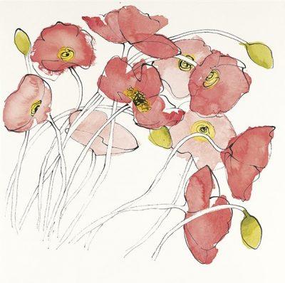 Black Line Poppies II