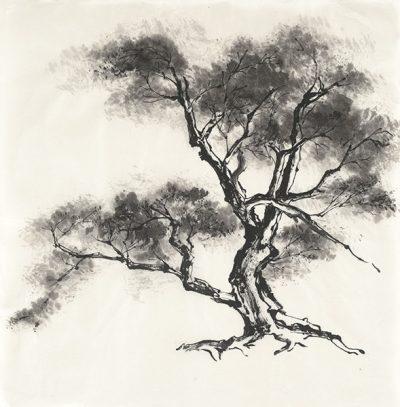 Sumi Tree II