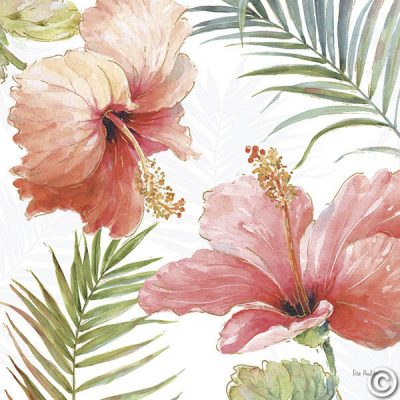 Tropical Blush II