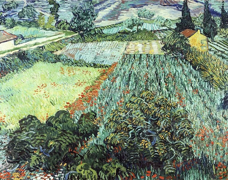 Vincent Van Gogh: breve biografía