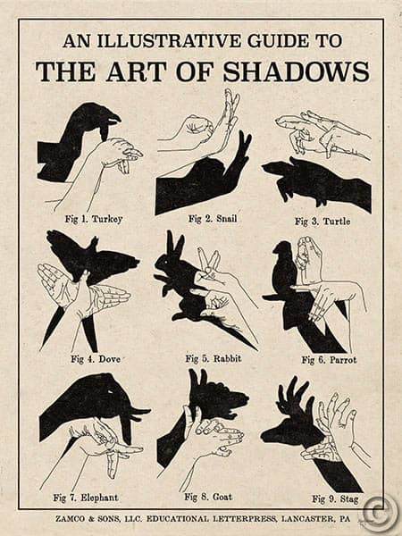 W31546 - The Art of Shadows X