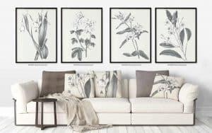 cuadros decorativos ideales
